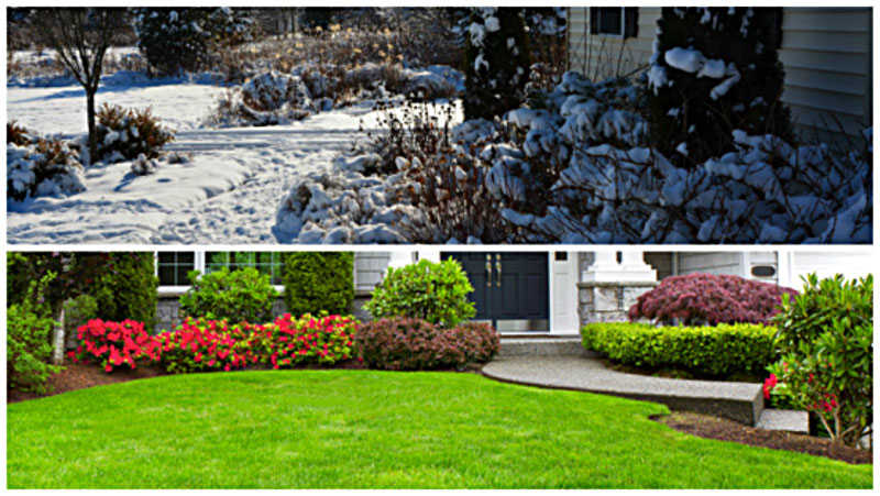 landscaping-winter-spring
